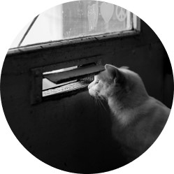"""<p style=""""text-align: center;"""">Vous souhaitez contribuer à la plateforme Humanage et partager une pratique inspirante que vous avez vue, vécue, ou dont vous avez simplement entendu parler ? Envoyez-nous un petit mail à <a href=""""mailto:hello@humanage.fr"""">hello@humanage.fr</a> !</p>"""